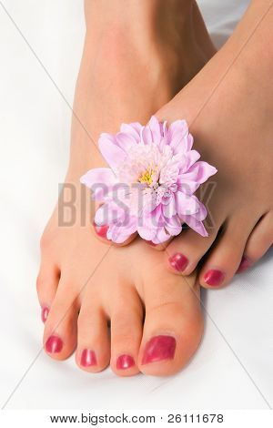 woman foot with flower chrysanthemum on white