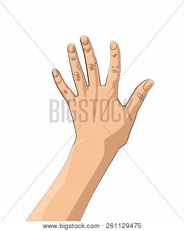 Men's And Women S Hands With Gestures. Giving High Five For Great Work.