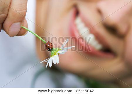 primer mujer sonriente sostiene manzanilla flores con Mariquita al aire libre