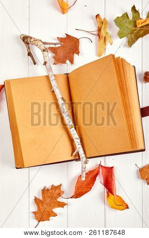 Open spreadsheet book with blank page on white wooden board. Autumn dry leaves top view.