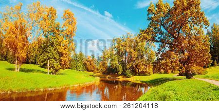 Fall landscape scene - fall trees near the river in fall sunny October park lit by sunlight. Panorama of fall park in sunny fall weather. Fall sunny landscape scene
