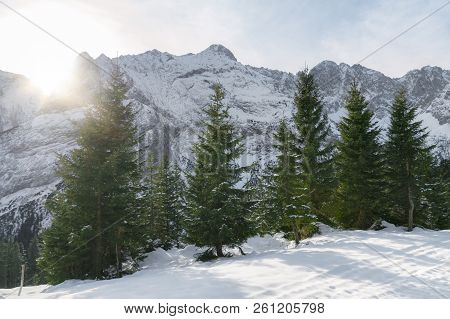 Bright Winter Scenery With The Snow-capped Alps Mountains And Evergreen Fir Forest, Under The Decemb