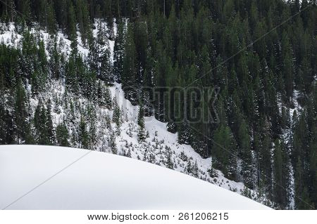 Winter Scenery With An Evergreen Fir Forest And A Pile Of Snow, In The Alps Mountains, In Ehrwald, A
