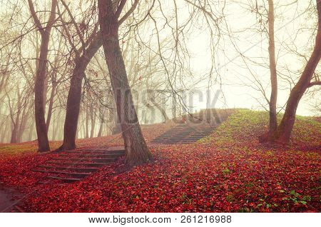 Autumn gothic landscape. Foggy autumn alley with bare autumn trees and dry fallen autumn leaves covering the old stone stairs in the autumn park