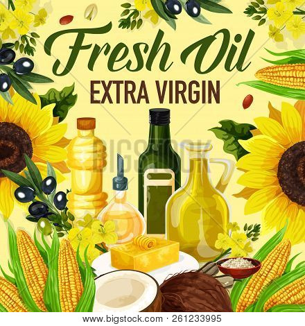 Natural Oil Made Of Sunflower Seeds, Olive And Corn, Peanuts And Linseed, Coconut And Rapse. Vector
