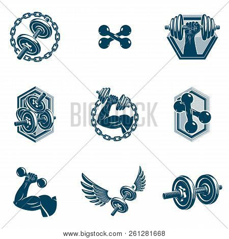 Set of vector fitness workout and weightlifting gymnasium theme illustrations made using dumbbells and disc weights sport equipment. Muscular athlete body silhouette. poster