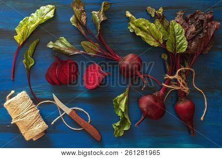 Pile Of Homegrown Organic Young Beets With Green Leaves On Dark Blue Wooden Table. Fresh Harvested B