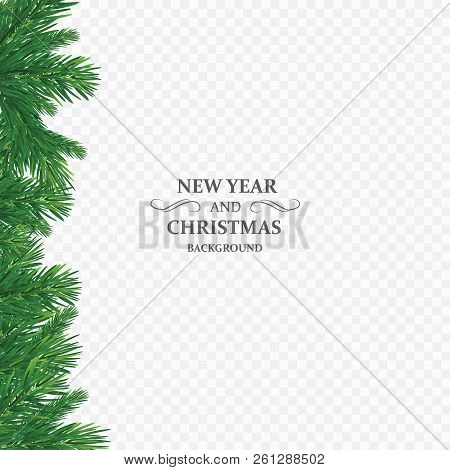 Background With Vector Christmas Tree Branches And Space For Text. Realistic Fir-tree Border, Frame