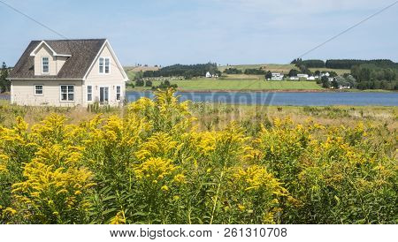 Beautiful Scenic View Of A Little House By The Sea With Golden Rod In The Foreground And Farmland In