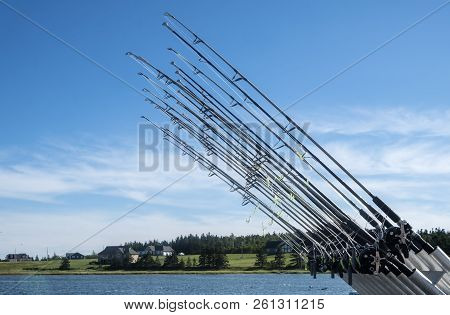 Row Of Fishing Rods Against Blue Sky
