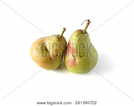 Two Pears. Really Organic Pear. Two Fresh Ripe Juicy Not Perfect Pears. Pear Isolated On White With