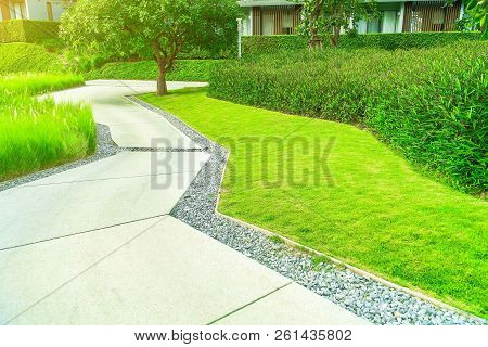 Concrete Road In The Park, The Garden Is Beautifully Decorated And The Concrete Road Cuts Through Th