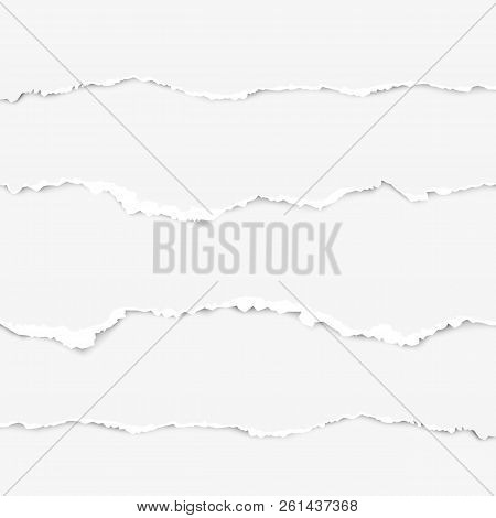 Realistic Torn Paper Set With Ripped Edges, Space. Torn Paper Edge. Vector Illustration