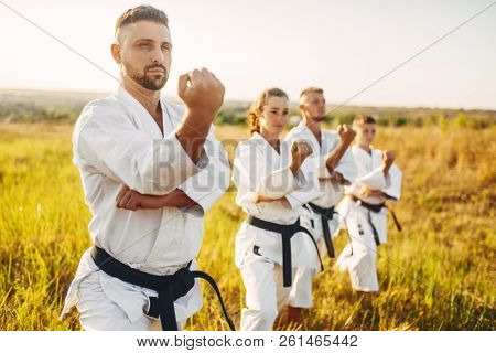 Karate group on training in summer field