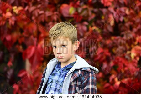 Sad And Unhappy. Sad Boy Is Blue In Autumn. Small Boy With Sad Look. Small Child Feel. Some Days Are