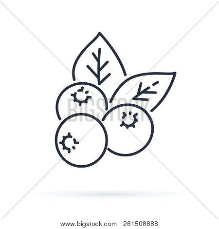 Blueberry Flat Line Icon, Forest Berry Sign, Healthy Food Logo. Illustration Of Cranberry, Lingonber