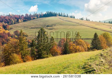 Autumn Scenery On A Bright And Warm Day. Lovely Colors.