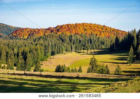 Beautiful Autumn Landscape. Distant Mountain In Fall Colors. Beautiful Sunny Weather