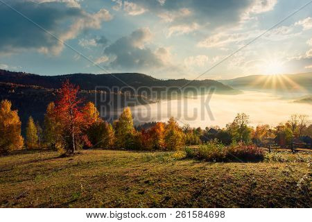 Valley Full Of Morning Fog In Mountainous Rural Area. Gougers Countryside With Trees In Fall Colors.