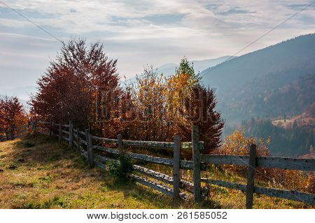 Fence Along The Hill. Trees In Colorful Foliage. Lovely Autumn Scenery In Mountains