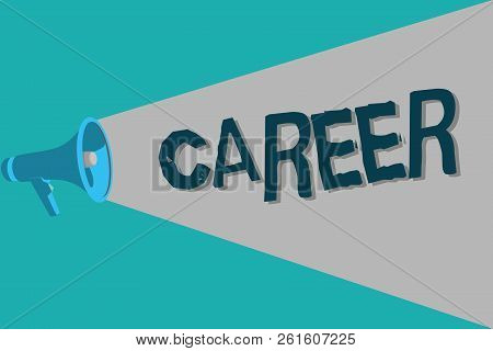 Conceptual Hand Writing Showing Career. Business Photo Text Undertaken For Period Persons Life With
