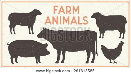 Vector Farm Animals Vintage Set. Silhouettes Of Cow, Pig, Sheep, Lamb, Hen. Farm Animals Icons Isola