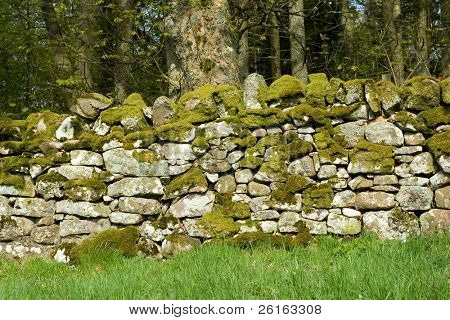low wall with moss, rural, scottish, scotland, stone wall,