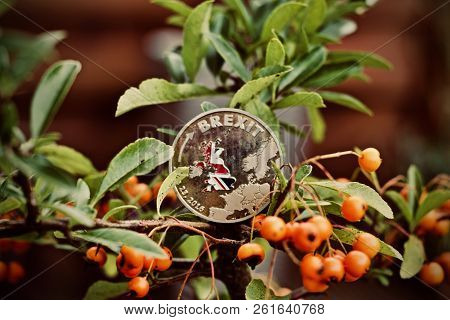 Brexit Coin With British Flag On The Green Tree. Brexit Outdoor Concept.