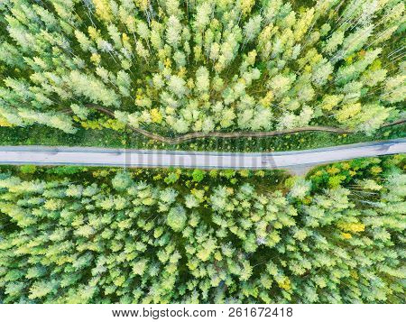 Aerial View Of A Country Road In The Forest. Beautiful Landscape. Clouds Over The Green Forest And R