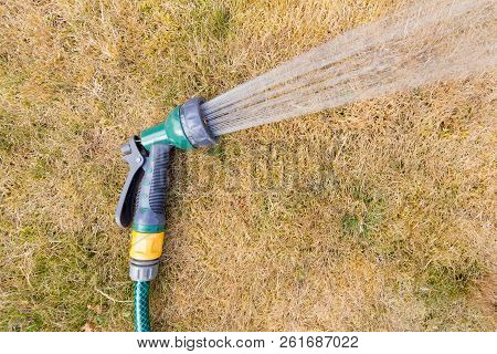 Hose Pipe Spraying Water On To A Parched Lawn