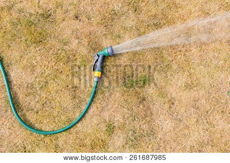 Drought Conditions - Hose Pipe Spraying Water On To A Parched Lawn