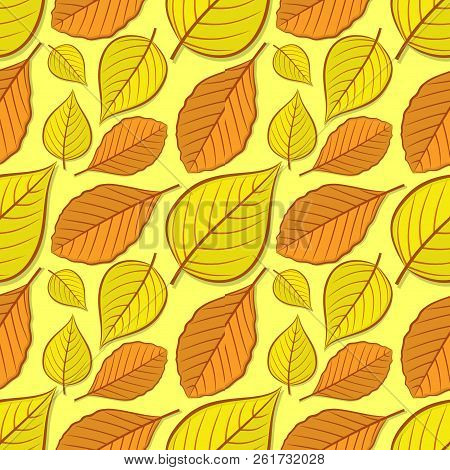 Seamless Pattern With Beech And Linden Autumn Leaves. Vector Illustration.