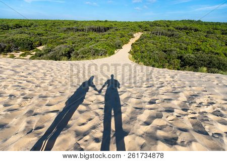 Shadows of man and woman standing together in the sand dunes at sunset, near the entrance of the path leading to the wild pine tree forest .