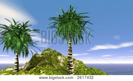 The Date Palm