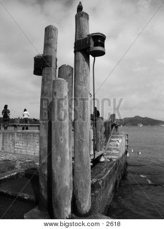 B/W Bird Post Pier 1