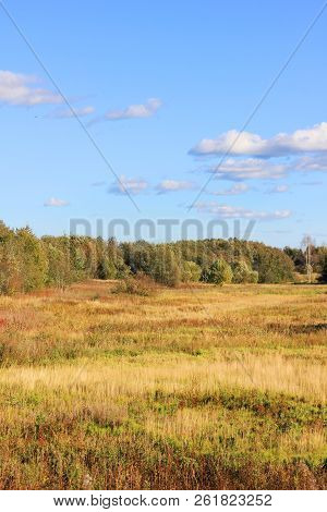 Meadow View On Autumn Nature Background. Rural Empty Field On Sunny Day, Beautiful Countryside Scene