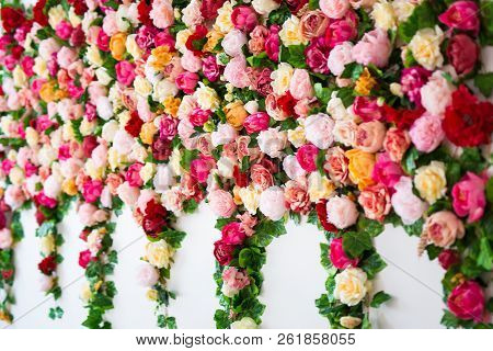 Wedding Decoration - Wall Background With Beautiful Colorful Roses And Peonies Flowers