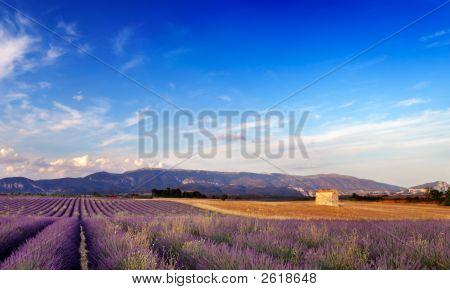 Landscape In Provence, France