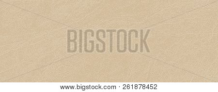 Colored Skin Texture, Natural Or Faux Leather Background. Beige Tint Of Almond Bone In Vector Backdr