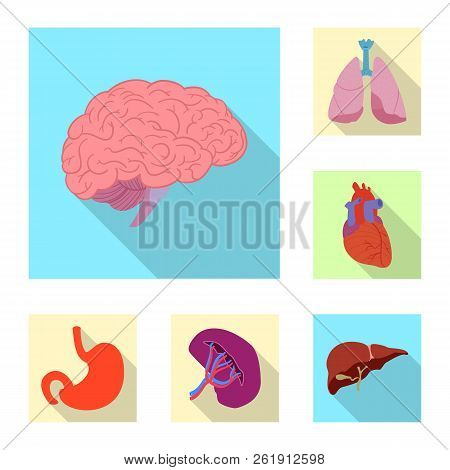 Vector Design Of Body And Human Logo. Collection Of Body And Medical Stock Vector Illustration.