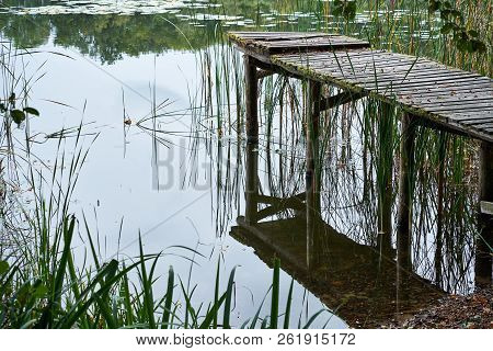 Old Rotten Pier Made Of Wood On A Lake Covered In Moss With Missing Planks At A Lake In The Forest.