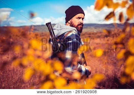 Autumn Hunting Season. Hunter With Shotgun Gun On Hunt. Autunm Hunting. Poacher With Rifle Spotting