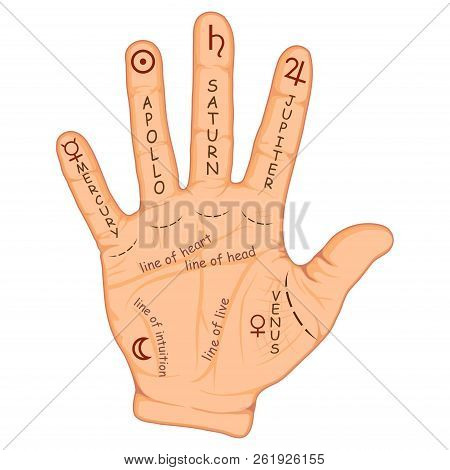 Palmistry Or Chiromancy Hand With Signs Of The Planets And Zodiac Signs. Palmistry Map On Open Palm.