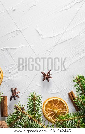 Christmas White Background Fresh Twigs Conifer Tree Dried Citruses Place Text
