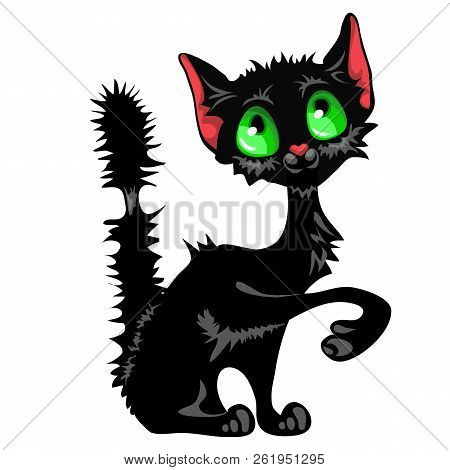 Funny Sly Black Cat With Green Eyes And Mangy Tail Isolated On White Background. Cute Homeless Anima