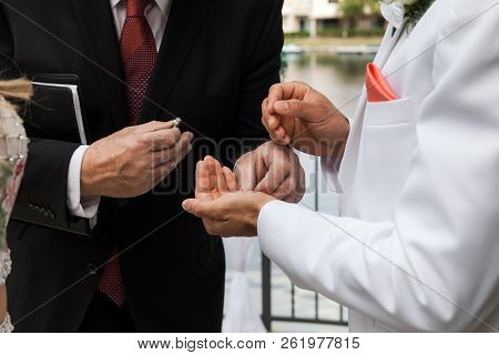 Groom Taking Ring From Pastor On Ceremony On Wedding Day, Outdor Ceremony