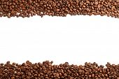 coffee beans stripes isolated in white background poster