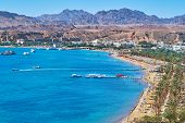 The cozy sand beach of Sharm El Maya is lined with shady palm trees and surrounded by Sinai desert rocks, Sharm El Sheikh, Egypt. poster