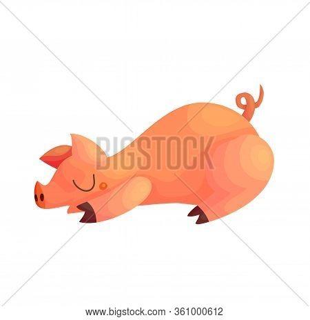 Cute Cartoon Sleeping Pig Vector Illustration. Baby Piglet Nursery Nap Character Design. Funny Piggy
