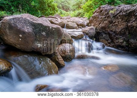 River Stone And Green Tree, View Water River Tree, Stone River And Green Tree Leaf In Forest